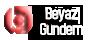 16. Uluslararası Türk Daması Şampiyonası
