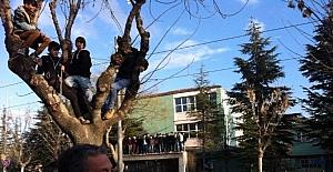Cezalı taraftarlar maçı ağaç üstünden takip etti