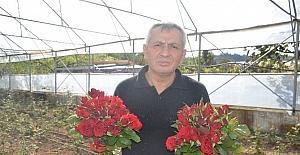 Fatsa'daki kesme çiçekçilerin sorunları
