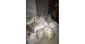 Niksar'da 2 ton mahlep hırsızlığı zanlıları yakalandı
