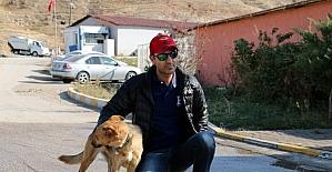 Ölüme Terk Edilen Köpek Sıcak Bir Yuvaya Kavuştu