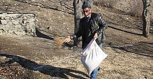 Osmancık'ta kuşlar için yem bırakıldı