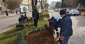 Kilis Belediyesi tarafın 2017 park bahçe yılı ilan edildi
