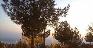 Recep Tayyip Erdoğan mesire alanı ışıklandırıldı