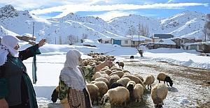 Yüksekova'da aylardır kapalı olan köy yolu açıldı