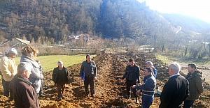 Bartın'da 2 köyde kızılcık bahçesi kuruldu