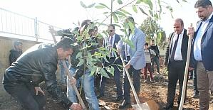 Silopi'de köy okulunda ağaç dikme etkinliği