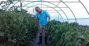 TİKA'nın tarım projeleri Karadağ'da çiftçilerin yüzünü güldürdü