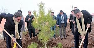 21 Mart Dünya Ormancılık Günü ve Orman Haftası