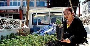 AK Parti'li kadınlar hem fidan dağıttı hem broşür