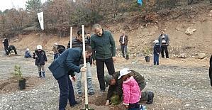 Emet , Hisarcık ve Çavdarhisar'da 12 bin 817 fidan toprakla buluştu