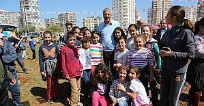 Mezitli'de jakaranda koruluğu 33'e yükseldi