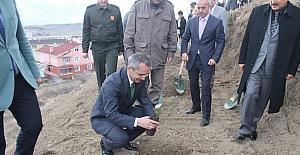 Tosya'da Ormancılık Haftası fidan dikilerek kutlandı