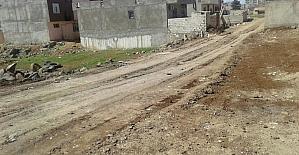 Viranşehir Belediyesi kırsalda hizmet seferberliği başlattı