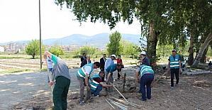 Osmaneli Belediyesi ve Denetimli Serbestlik Müdürlüğünden örnek çalışma