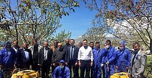 Bitlis'te ceviz hastalığı ile mücadele çalışması