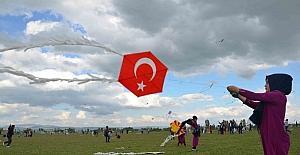 Hasköy'de uçurtma şenliği