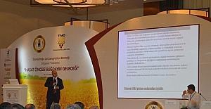 Mardin'de 'Hasat öncesi buğdayın geleceği' sempozyumu