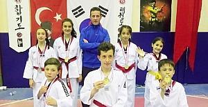 Taekwondo dereceleri sevindirdi
