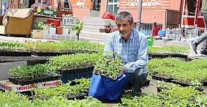 Yozgat'ta fide satışları başladı