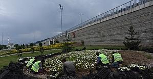Düzce Belediyesi kenti çiçeklendirmeye devam ediyor