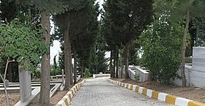 Mezarlıklara ziyaret için otobüs seferleri