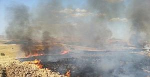Siirt'te anız yangını