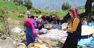 Sülünkaya'da köy şenliği coşkusu