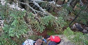 Kaybolan dağcılar yapılan operasyonla kurtarıldı