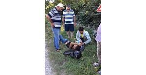 Kocaali'de motosiklet kazası: 1 yaralı