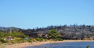 Ayvalık'ta aynı ormanda bir yangın daha çıktı