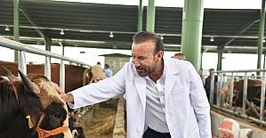 Başkan Doğan hayvan pazarında incelemelerde bulundu