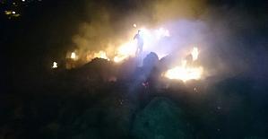 Malatyada orman yangını