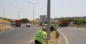 Siirt'te yol kenarları temizleniyor