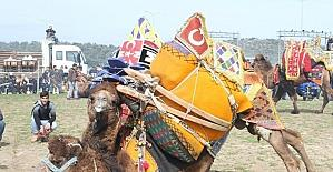2017-2018 dönemi deve güreşi takvimi belirlendi