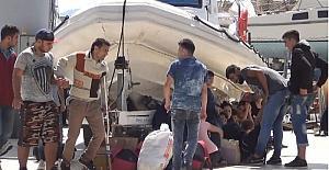 Ayvalık'ta 47 Suriyeli mülteci daha yakalandı