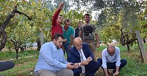 Dolu mağduru İznikli çiftçilere destek