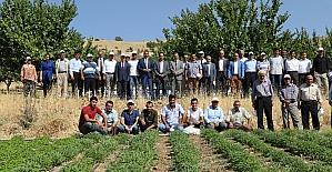 Elazığ'da tarla günü düzenlendi