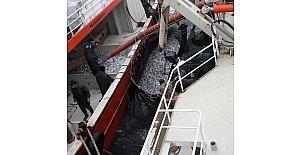 Karadeniz'den en çok hamsi ve palamut çıkıyor