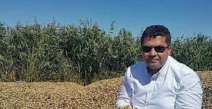 """MHP'li Ersoy: """"Yer fıstığı destekleme kapsamına alınmalı"""""""