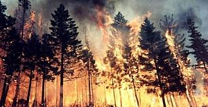 Orman yangını için Gürcistan'a yardım gönderildi