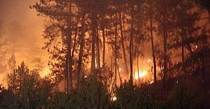 Orman yangınlarına karşı yasaklar açıklandı