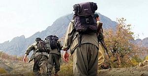 PKK'lıların ifadeleriyle PKK'nın son hali