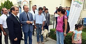 Uşak'ta 2 genç çiftçiye 74 adet keçi verildi