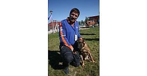 Arama ve kurtarma köpeklerinin zorlu yeterlilik sınavları