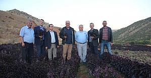 TÜBA üyeleri Arapgir'de incelemelerde bulundu