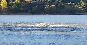 Uşak Gölü canavarı da çıktı!