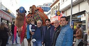 Ayvalık'ta develer görücüye çıktı