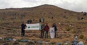 Sivas'ta 'Bir Fidan Bin Hayat' kampanyası