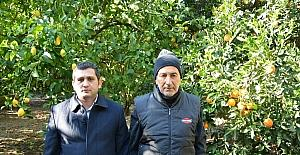 """Dalaman Ziraat Odası Başkanı Tuncay; """"Üretimin Maliyeti Yüksek"""""""